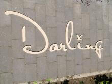 Darling Clothes Logo