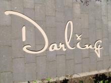 Darling Clothes Logo